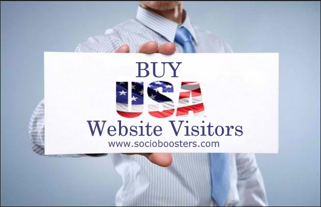 USA website visitors