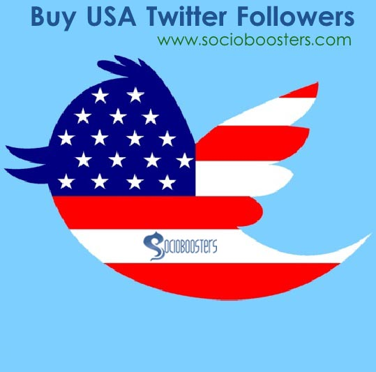 Buy targeted USA twitter followers