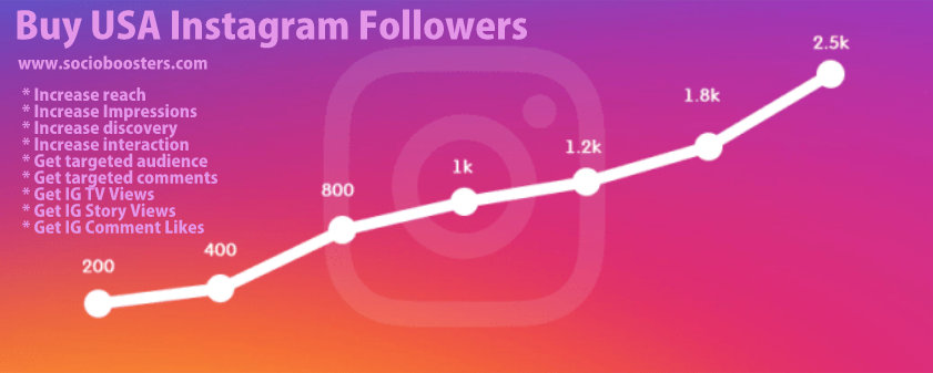 Get USA Instagram followers (2)
